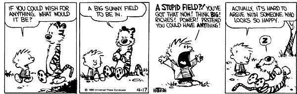 calvin hobbes outdoors play