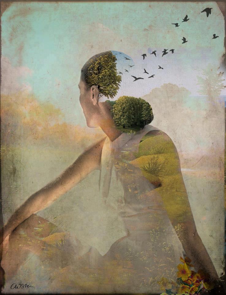 meditation consciousness enlightenment